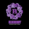 בלוברי – BLUEBERRY